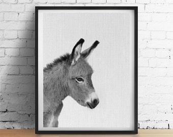 DONKEY Printable Art, Christmas Donkey Print, Baby Animal Print, Horse Foal Print, Nursery Wall Art, Black and White Photograph Download