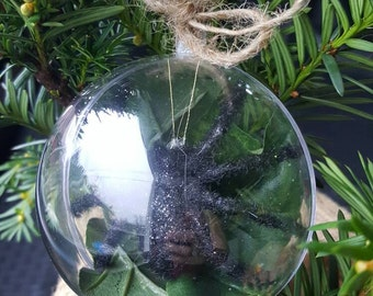 Xmas spider plant bulb ornament