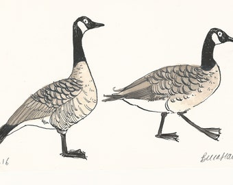 Original illustration - Canada Geese