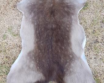 Real Fallow deer skin rug