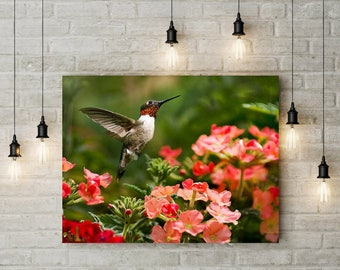 Wall Art, Canvas Print, Hummingbird Art, Home Decor, Ready to Hang Prints, Hummingbird, Summer Wall Art, Hummingbird Flying, Garden Wall Art