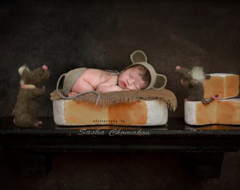 digital backdrop , background  newborn  boy or girl self cheese  mouse