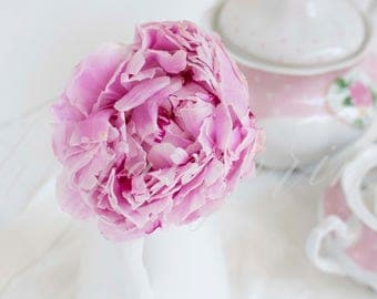 Floral Styled Stock Photography / Pink Peony / Product Mockup / Styled Photo / Blog / Website