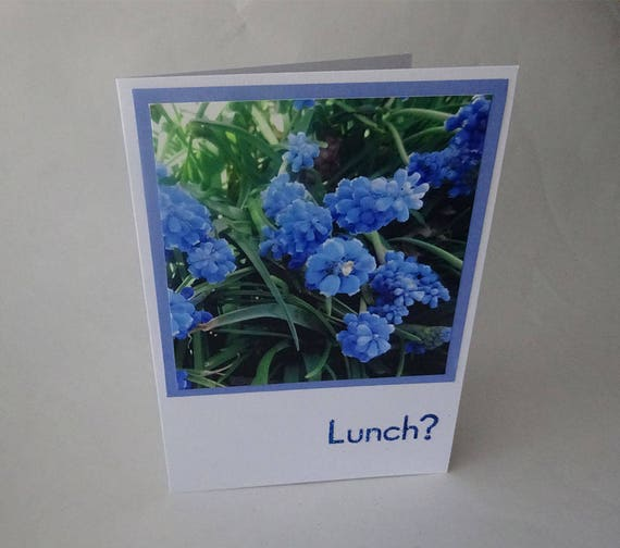 "Mother's Day Card with Blue Muscari (Grape Hyacinth) Flowers and the Word ""Lunch?"" - #1265"