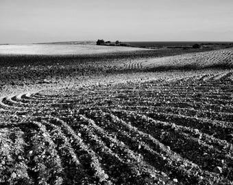 Earth, Otranto, countryside, nature, landscape, photography, Salento, Torre Sant'Emiliano, white, black, furniture, printing, fineArt