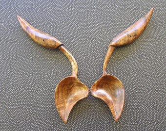 Pair of Mango Spoon