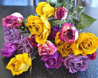 Long stem Mix Color Roses