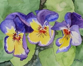 Three Pansies watercolor