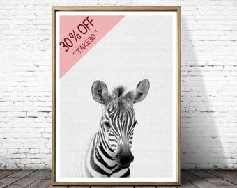 Zebra Print, Nursery Wall Art Print, Baby animal Prints, Zebra Photography, Safari Nursery print, Zebra Wall Art, Cute Nursery Animal