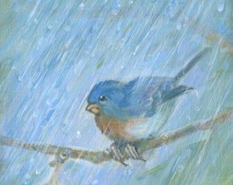 Blue Bluebird, Art Print, Bird Art