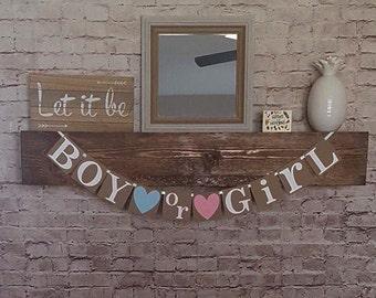 Boy or Girl Banner- Gender Reveal Banner- Gender Reveal Party Banner-  He or She Banner- Gender Reveal Garland