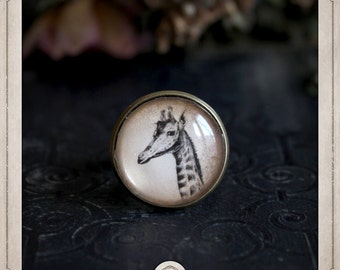 GIRAFFE bronze Adjustable ring and glass cabochon 20mm BGCB042