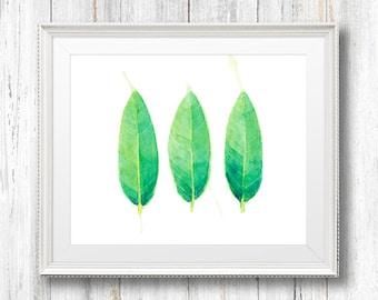 Leaves Watercolor Painting. Fine Art Print. Decor. Botanical. Giclée