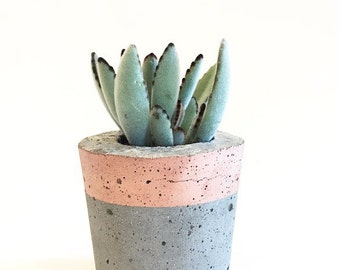 Medium Tall Concrete Pot