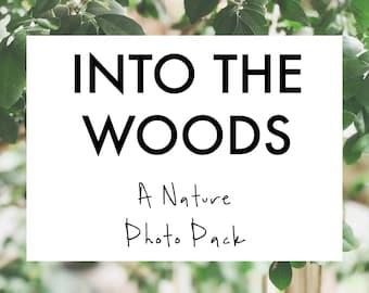 Stock Photos Blog Photography Pack, Royalty Free | INTO THE WOODS