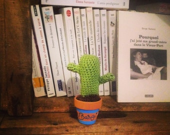 Mini Cactus in crochet Antoine