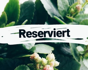 LE - Maja - Special Edition - reserved