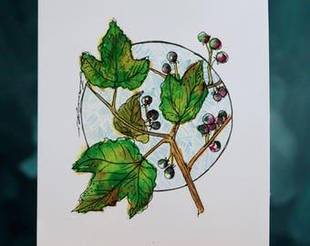 Botanical Print #3  5x7
