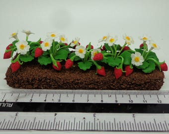 1:12 Strip Of Strawberry Dolls House Miniature Vegetable Garden Accessory