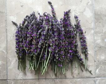 Organic Natural Air Dried California USA Lavender