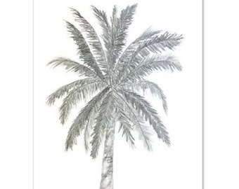 Original Pencil sketch, Palm tree drawing, Tropical graphite Drawing, Nature drawing, black and white, Florida drawing