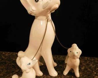 Vintage 1950s Three white French Poodles on a  chain leash