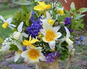 Bunches of seasonal garden flowers, fresh, organic, straight from the garden, real.