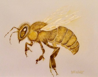 Honey Bee PRINT, Bees, Apis Mellifera, Original Artwork, Mixed Media, Bee Keeping,