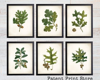 Oak Leaf Botanical Art Prints. Leaf Print. Leaf Art. Botanical Print. Kitchen Art Prints. Dining. Botanical Wall Art. Farmhouse Decor. 128