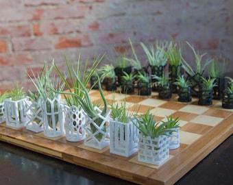 Air Plant Living Chess Set - Bamboo Board