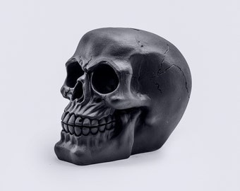 Skull Moneybox / Череп Копилка