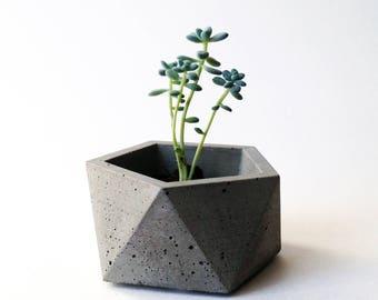 Concrete Planter / Geometric Industrial Decor / Icosahedron / Succulent, Cactus  or Air Plant Pot / Ring Dish / Minimalist Accent Piece