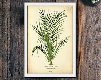 Tropical Print, Tropical Decor, Tropical Printable Art, Tropical Digital Art, Tropical Plant Print, Palm Tree Print, Palm Leaf (#4131b)