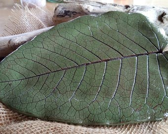 Ceramic shell impression of real leaf.