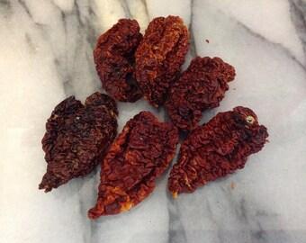 Organic dried chocolate bhutlah chilli, chile