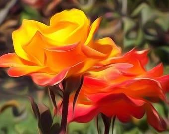 Digitally Enhanced 8x10 Photo Print - Roses from San Jose Rose Garden