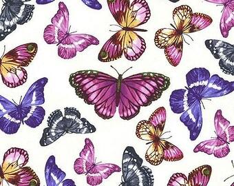 Kanvas Papillon White - Butterflies