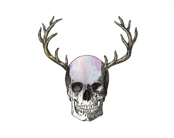 Skull Antler Original