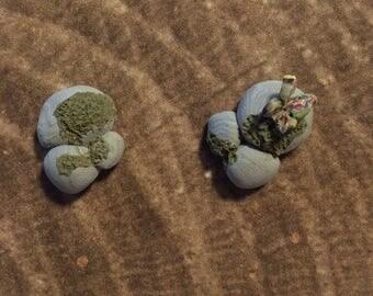 Mossy Rock Earring