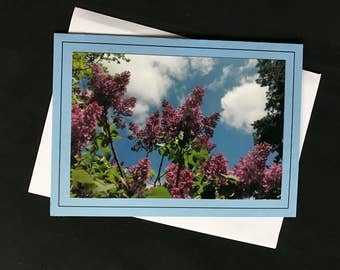 Lilacs in Blue Greeting Cards