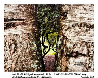 Limited Edition Print ~ Robert Frost Passage