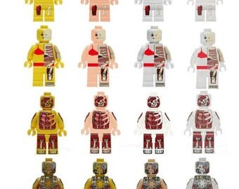 16x Anatomy Dissection Skeleton Minifigures | Custom - 100% Compatible | Different Shades - Inside the Body | Mecha | Robot