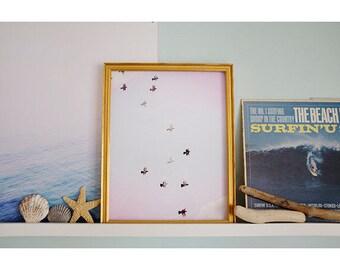 pigeons no. 2, nature photography, bird print, minimalist photo, art print