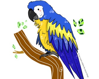 Blue Parrot - Digital Illustration // little animals collection