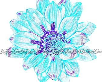 White, Teal, Purple Daisy photograph, canvas print, various sizes