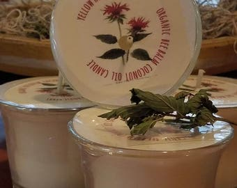 Bee Balm Cocout Oil Candle