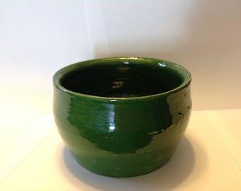 Green Universe Flower Pot