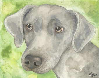 Weimaraner Original Watercolor Print, Realistic