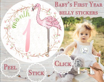 Month Stickers Girl Shower Gift Infant Growth Stickers  Baby Stickers  Baby Milestones  Infant month Tropical Flamingo month Stickers Month