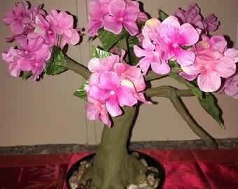 Bonsai Blossom Tree